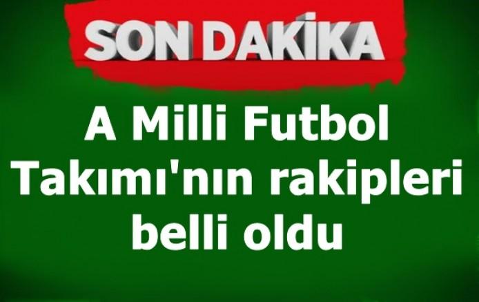 A Milli Futbol Takımı'nın rakipleri belli oldu