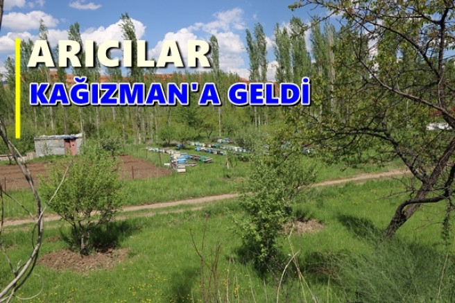 ARICILAR KAĞIZMAN'A GELDİ