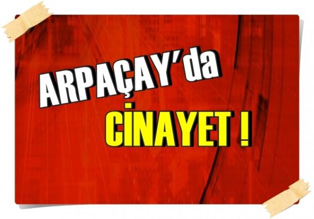 Arpaçay'da cinayet