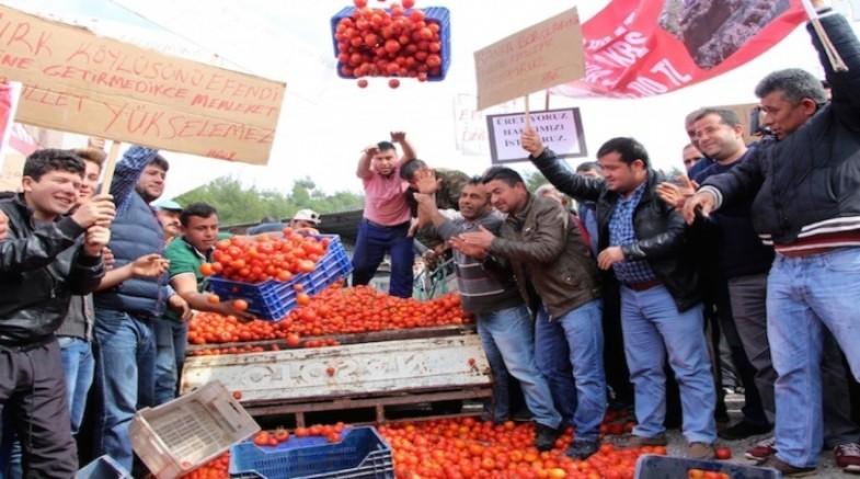 Eylül ayında tarım sektörünün kredi borcu 105 milyara ulaştı