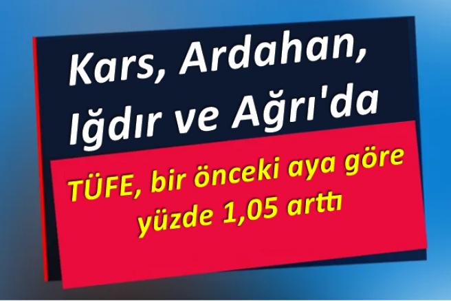 Kars, Ardahan, Iğdır ve Ağrı'da TÜFE yüzde 1,05 arttı